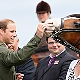 Prince William took a turn feeding a horse during a royal appearance at the Anglesey Agricultural Show in Wales.
