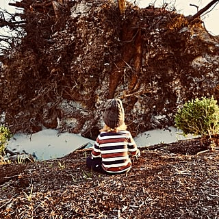 Hurricane Michael Personal Essay