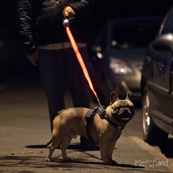 Star Wars Lightsaber Light-Up Leash