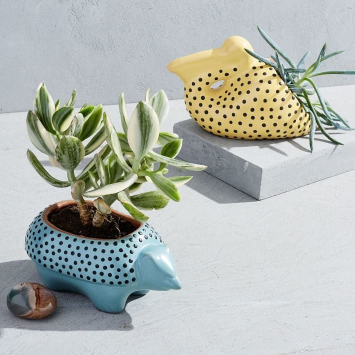 12 Ideas For Quirky Plant Containers To Jazz Up Your Garden: POPSUGAR Smart Living