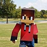 Minecraft Makeover