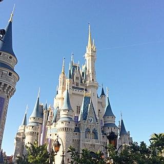 New Walt Disney World Attractions in 2019