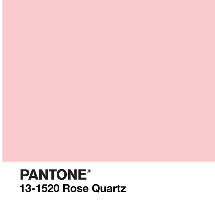 Pantone Colour of the Year Shopping Guide