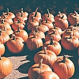 Capricorn (Dec. 22-Jan. 19): Pumpkin Patch