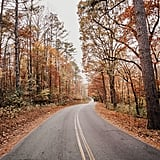Sagittarius (Nov. 22-Dec. 21): Foliage Road Trip