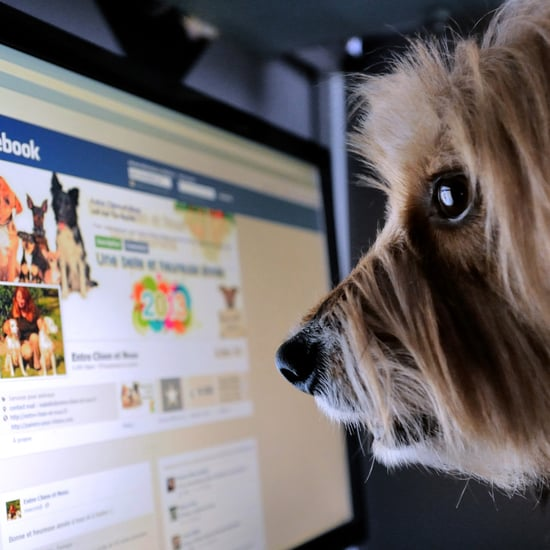 Facebook Overestimated Video Views