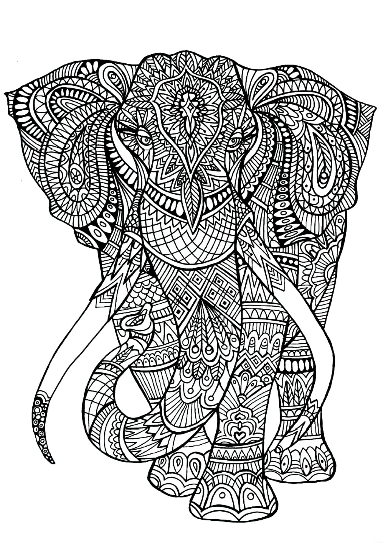 Get The Coloring Page Elephant 50 Printable Adult