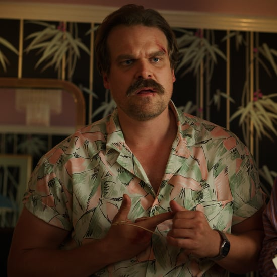 David Harbour's Instagram Hints About Jim Hopper's Fate