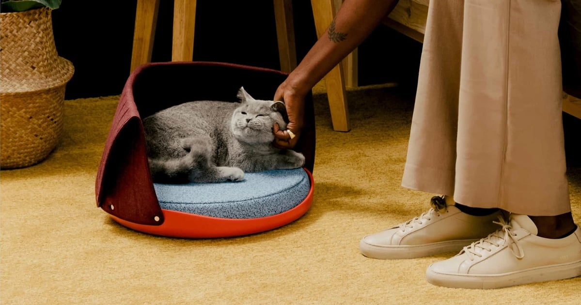 20 Cool Gifts For Cats That'll Actually Benefit Owners, Too