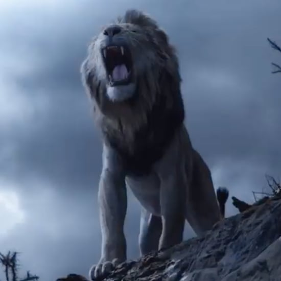 Simba and Scar in The Lion King Reboot Video