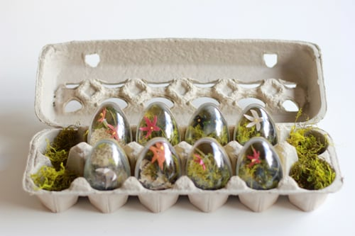 Easter Egg Terrariums