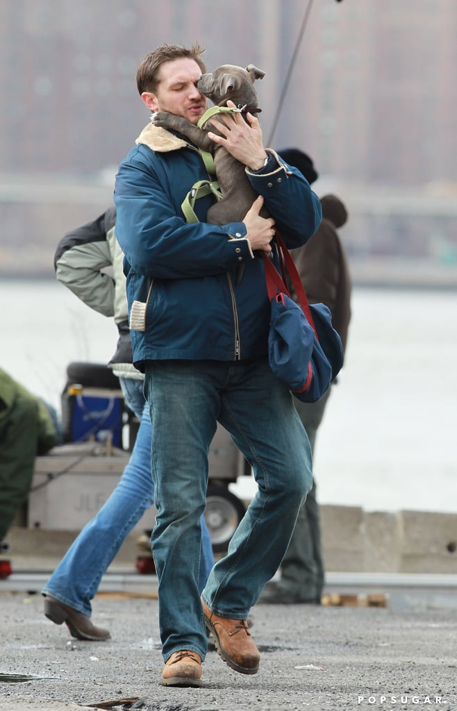 Tom Hardy got some love from his canine costar on the set of Animal Rescue in NYC on Monday.