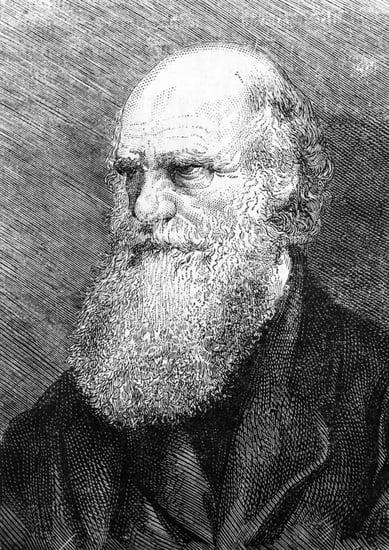 Happy Birthday Darwin — Do You Believe in Evolution?
