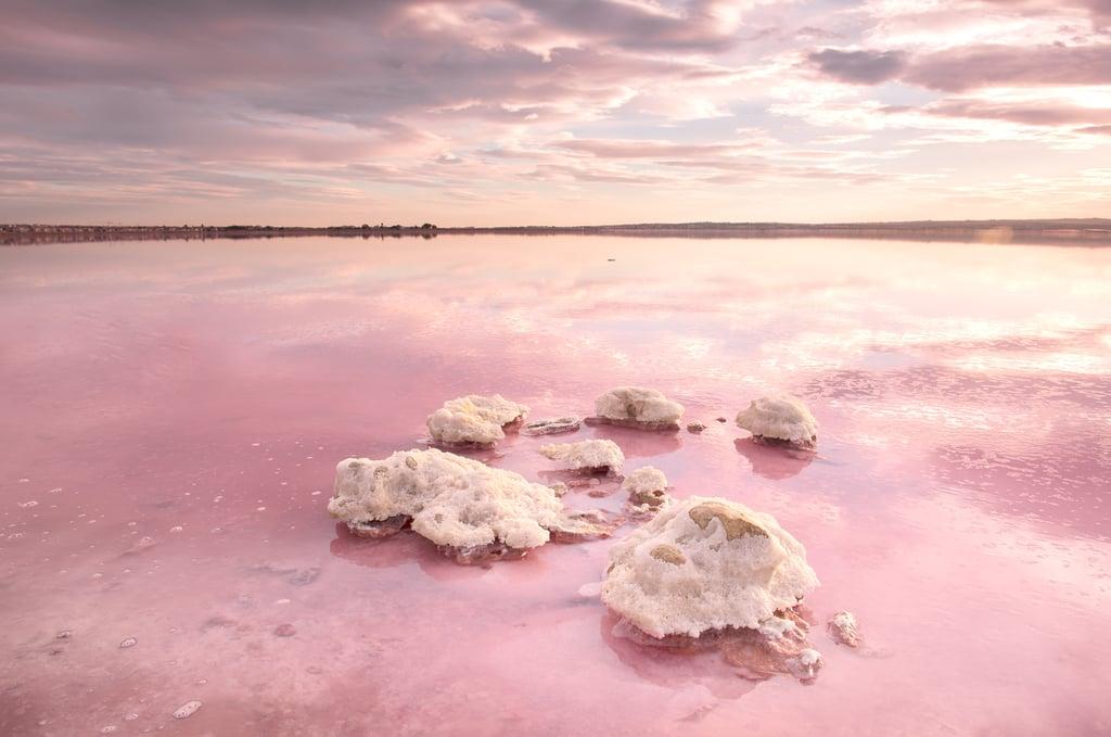 Admire the Pink Hues of Laguna Salada de Torrevieja in Spain