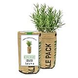 Under $20: Organic Grow Kits