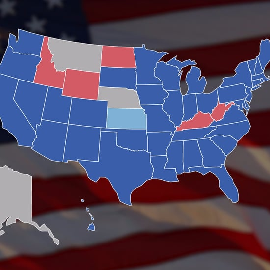 How Millennials Voted in 2016 Election (Video)
