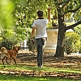 Ryan Reynolds at a Boston park with Baxter.