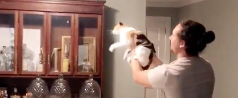 Man Helps Cat Catch a Moth | Video