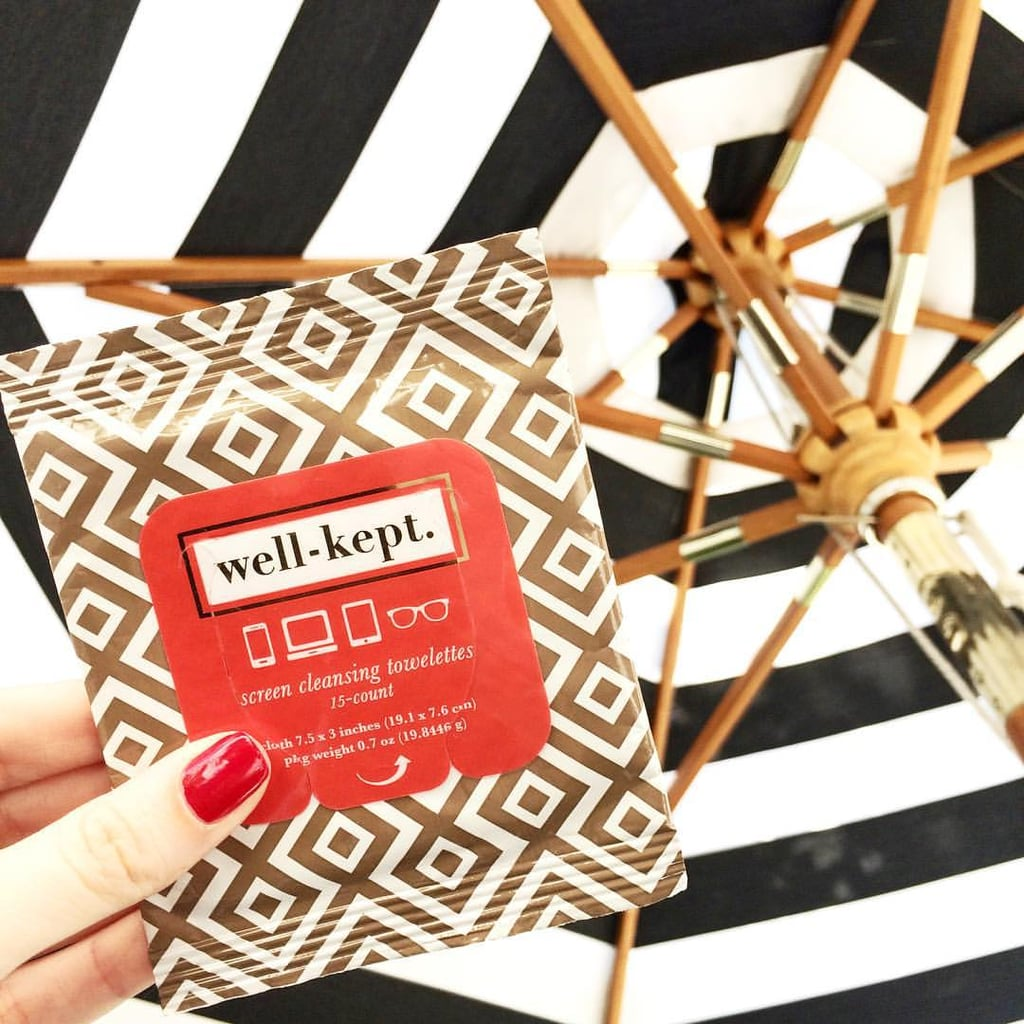 Well-Kept Wipes