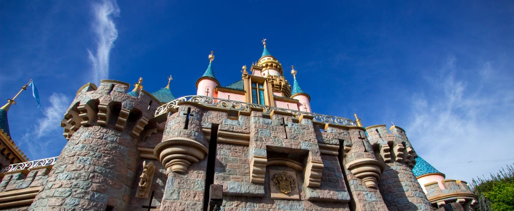 A Former Disneyland Security Employee Reveals What It's Like Working at the Park