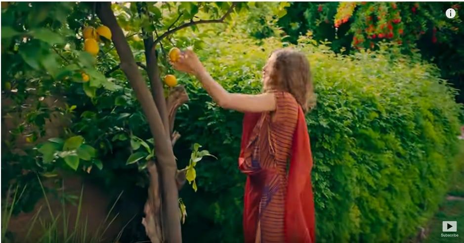 One of the first things we see is Zendaya picking lemons off of a beautiful lemon tree — we hope she's got some delicious lemon recipes to use up all that fruit!