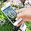 How to Solve This Annoying but Common Instagram Dilemma
