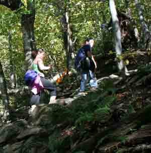 Hike the Hill: Preventing Knee Pain