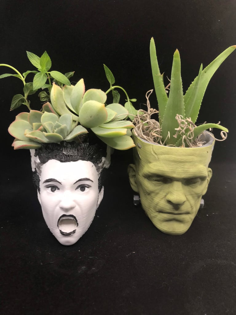 Frankenstein and His Bride Succulent Planters | Etsy