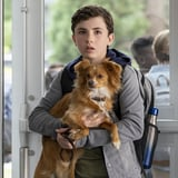 Netflix The Healing Powers of Dude Trailer