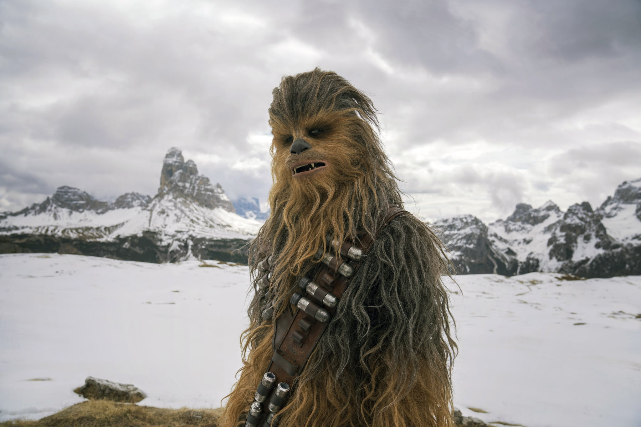 SOLO: A STAR WARS STORY, Joonas Suotamo as Chewbacca, 2018. ph: Jonathan Olley / Lucasfilm/  Walt Disney Studios Motion Pictures /Courtesy Everett Collection