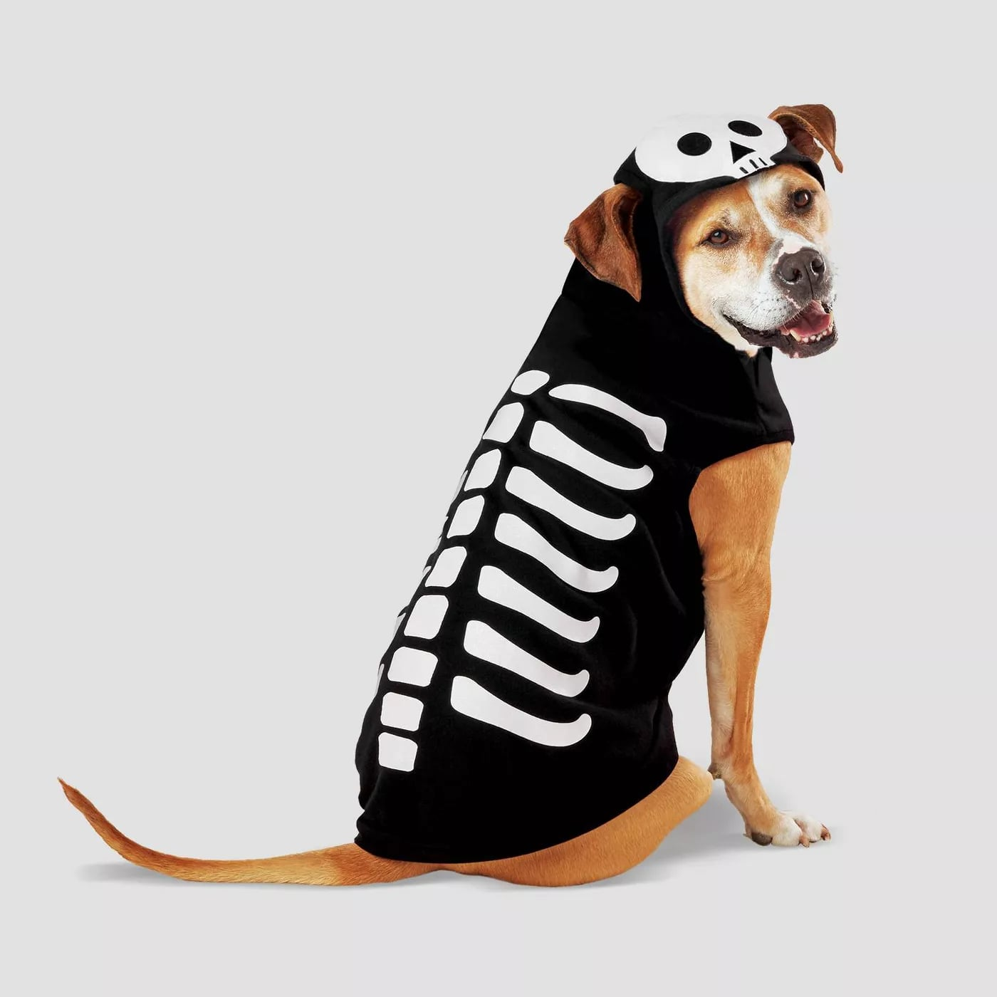 Pet Halloween Costumes For Cats And Dogs At Target 2020 Popsugar Pets