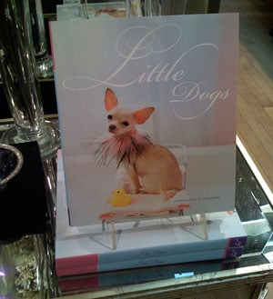 Little Dogs Book for The Small Dog Lover