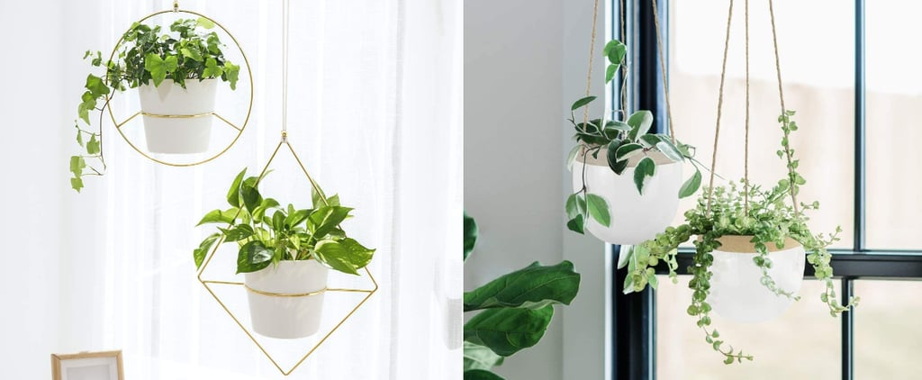 Best Hanging Planters on Amazon