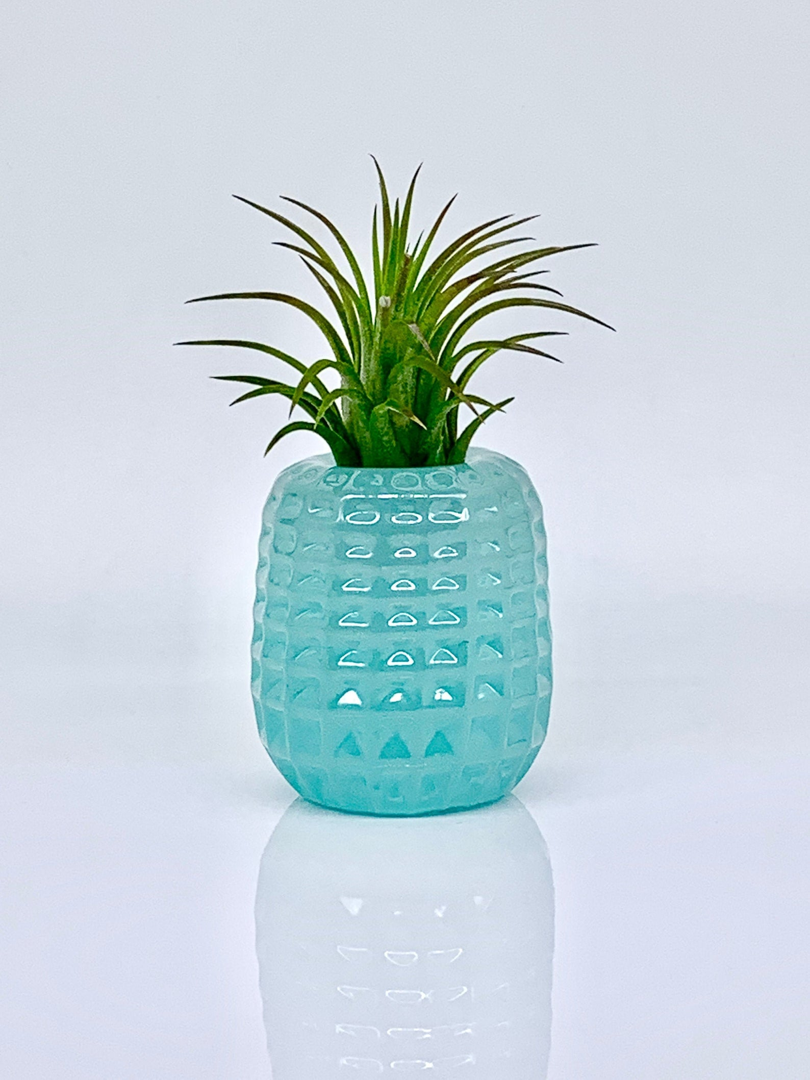 Plant Lover Gift Teal Pineapple PREMADE Pineapple Lover Gift Turquoise Pineapple Air Plant Holder