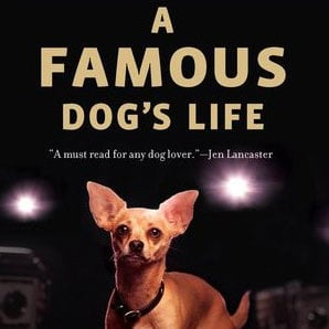 Taco Bell Dog Trainer Book