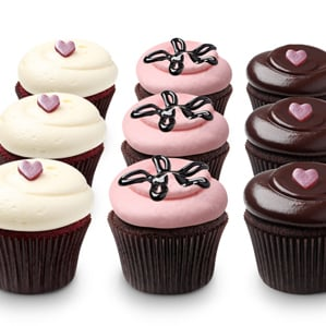 Georgetown Cupcake Chocolate Ganache Cupcake Recipe