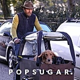James Middleton Riding Bike With His Dogs Feb. 2019
