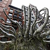 When a 20-foot Whomping Willow Popped Up in New York For the Release of Harry Potter and the Deathly Hollows