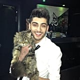 When He Held a Cat and You Wished You Were That Cat
