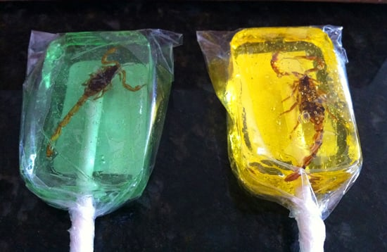 Scorpion Suckers