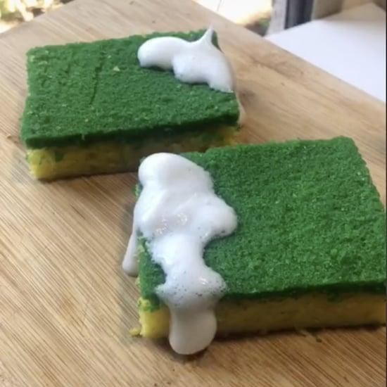 Dish Sponge Cake TikTok Video