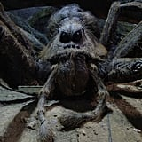 Julian Glover as Aragog