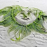 Create a Seaweed Masterpiece