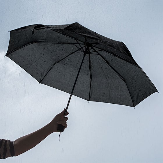 Black Umbrella ($1 each)