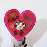 Chocolate Box Pet Costume
