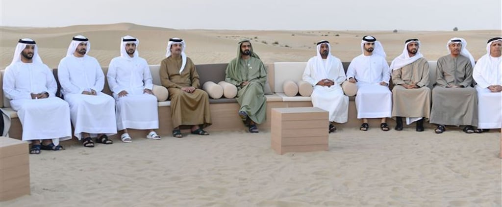 Sheikh Mo's Latest Project Is Set to Boost Eco-Tourism in the UAE