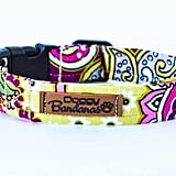 Funky Dog Collar ($16 and up)