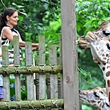Katie and Suri Feed Giraffes at the Zoo!
