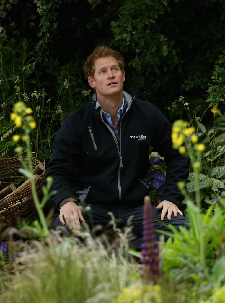 Getting Personal: Prince Harry