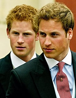 Prince William and Prince Harry Hotness Poll